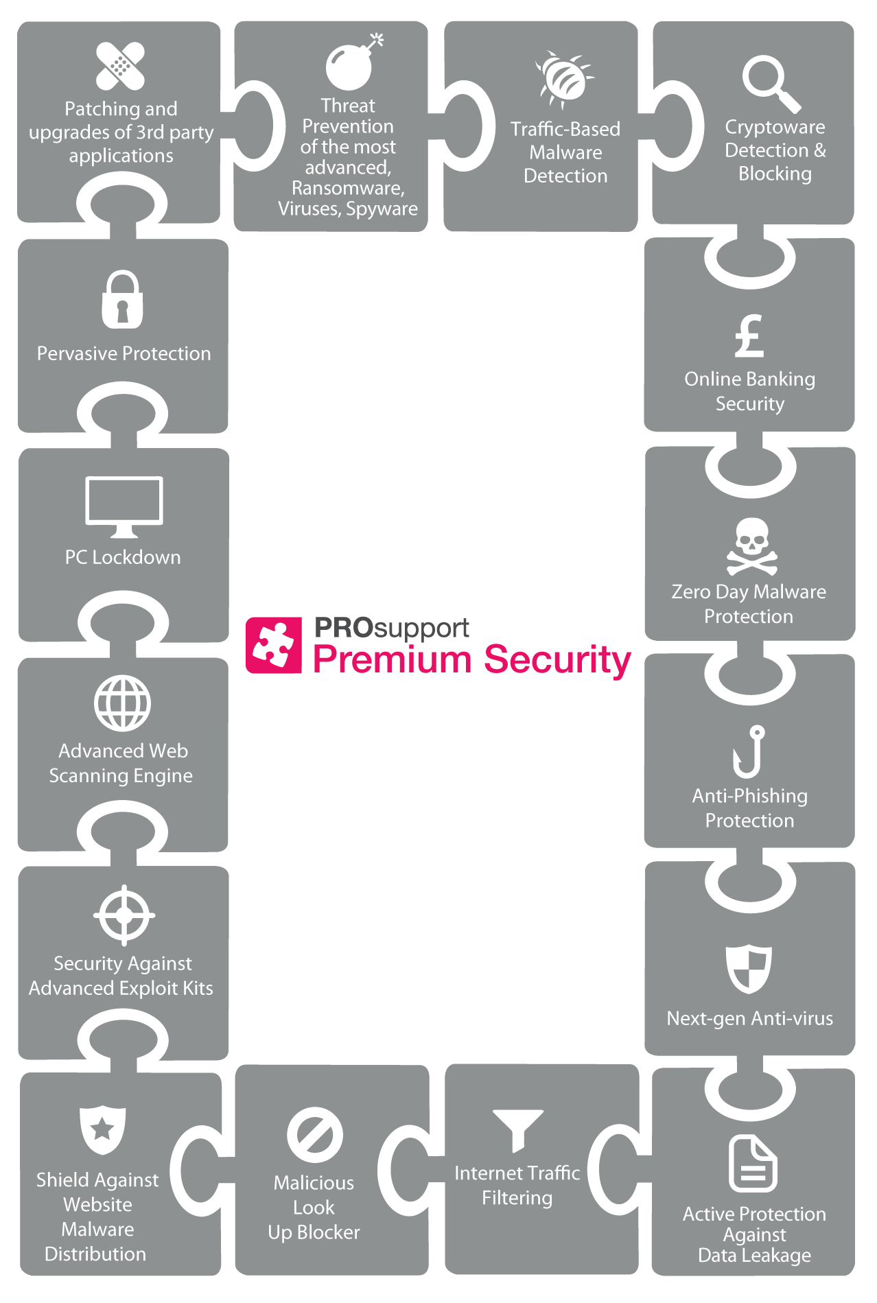 PROsupport Premium Security Infographic